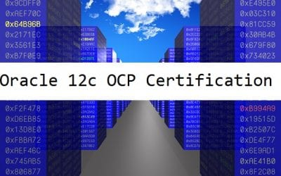 Oracle Database 12c Administrator Certified Professional (OCP)